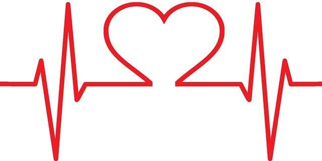 Cardiovascular Endurance: Understanding Its Importance