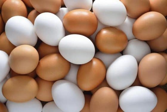 Egg: The Nature's Super Multivitamin