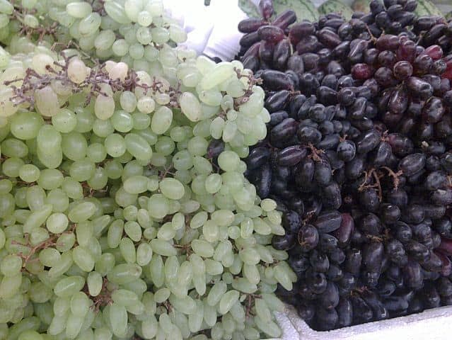 The Greatness of 'Grape Seed'