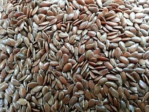 Seeds produce essential fatty acids