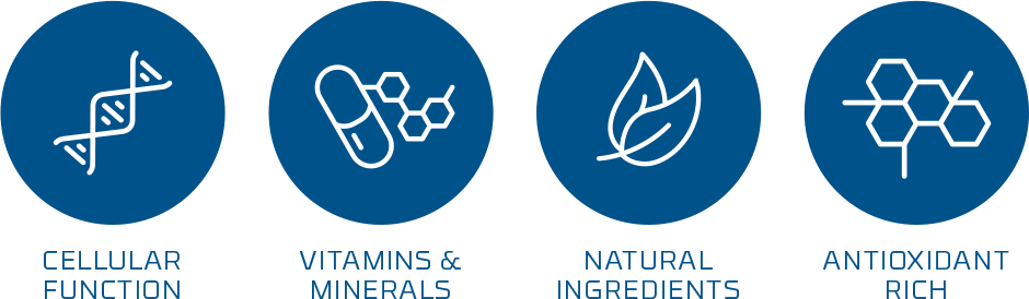 NUTRIFII — NUTRITIONAL SUPPLEMENTS 1