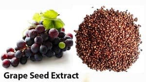 grape-seed-extract