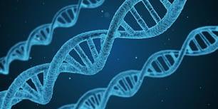 cellular DNA
