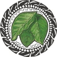 Tahitian Noni Juice 10