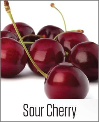 Sour Cherry in MOA