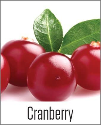 Cranberry in MOA